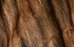 Как выбрать норковую шубу: фото
