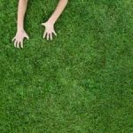 Шикарный газон своими руками