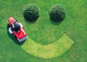 Машинки для стрижки газона.